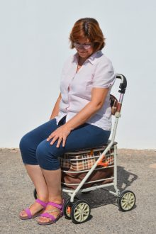 Carucior pentru cumparaturi cu 4 roti si scaun